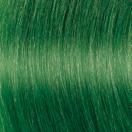 f13-c-green-h1