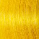 f14-c-yellow1