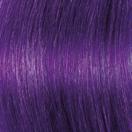 f15-c-purple1