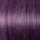 f22-j-purple1